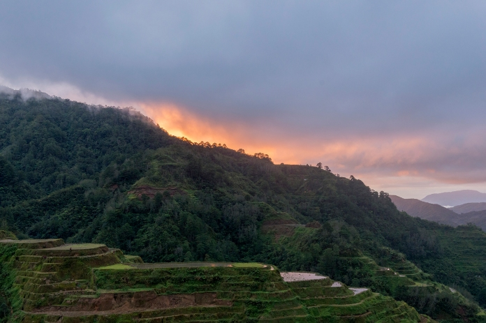 Le jour se lève sur les rizières de Banaue.