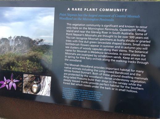 De nombreuses plantes rares se trouvent dans le parc national ainsi que des animaux (chauve-souris, opossum, bandicoot à nez long, souris marsupiale...).