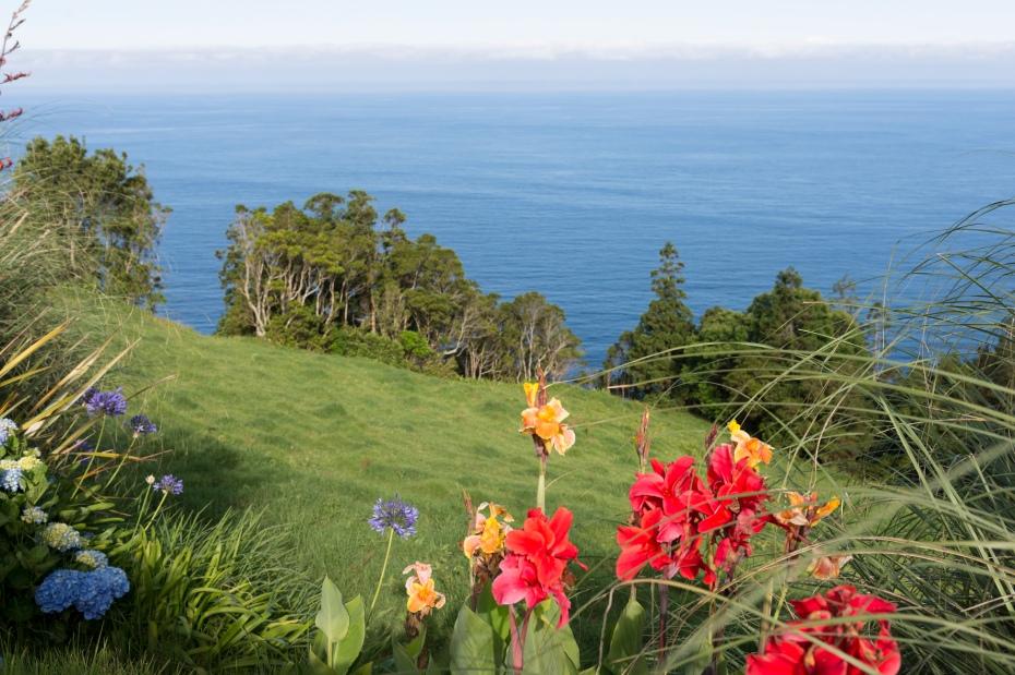 Le Jardin de Ponta do Sossego est sublime avec de nombreuses variétés de fleurs et de plantes endémiques.
