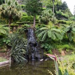 Le beau jardin de Ribeira do Guilherme.