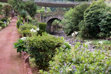 Visible depuis la route qui le surplombe, le jardin botanique de Ribeira do Guilherme est très agréable et le personnel aussi.