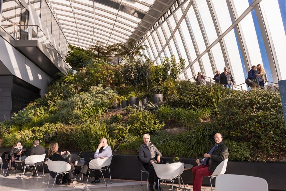 Photographie d'architecture d'intérieure au Jardin Suspendu de Londres.