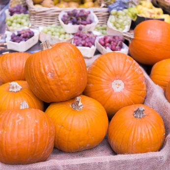 Pumpkin at Borough Market