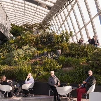 Pause relaxante dans les nuages au Sky Garden.