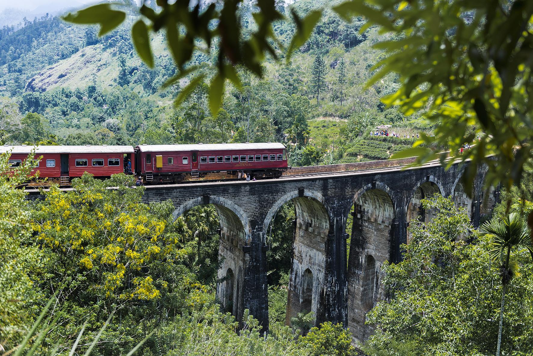 Photo d'un viaduc dans la jungle avec un train rouge qui circule dessus.